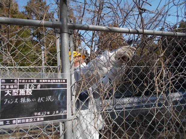 フェンスに絡んだ蔓や草の除去及び拭き取りを行っています。